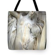 Seeing Stars At The Dupont Circle Fountain Tote Bag