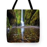 Oneonta Falls Tote Bag