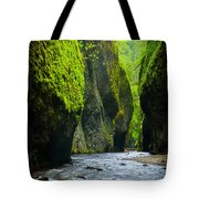 Oneonta River Gorge Tote Bag