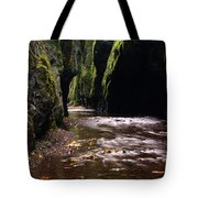 Onieata Gorge Tote Bag