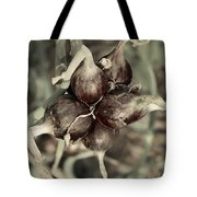 Onion Seed Heads Tote Bag