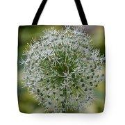 Onion Seeds Tote Bag