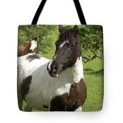 Onlookers Tote Bag