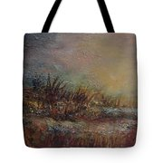 Onset Of Evening Tote Bag