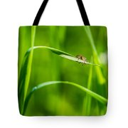 Oops Ooover-load - Featured 2 Tote Bag