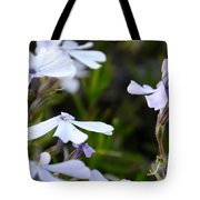 Open And Shut Tote Bag