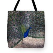 Open Feathers Tote Bag