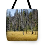 Open Meadow Glacier National Park Tote Bag