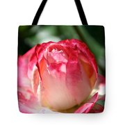 Open To A New Day Tote Bag