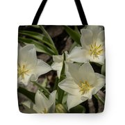 Open Tulip Time Tote Bag