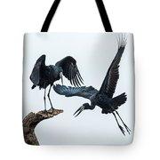 Openbill Storks Flying, Tarangire Tote Bag
