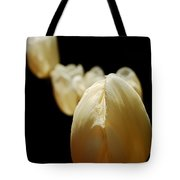 Opening Night - Tulips In The Spotlight Tote Bag