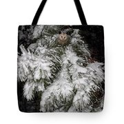 Opossum In The Pines Tote Bag