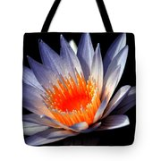 Orange And Blue Lily...   # Tote Bag