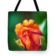 Orange And Fuschia Rosebud Tote Bag