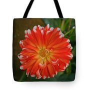 Orange And White Tote Bag