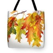 Orange And Yellow Oak Leaves Tote Bag
