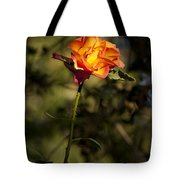 Orange And Yellow Rose Tote Bag