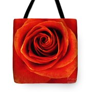 Orange Apricot Rose Macro With Oil Painting Effect Tote Bag