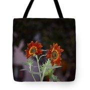 Orange Asters Tote Bag