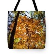 Orange Autumn II Tote Bag