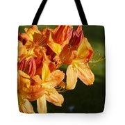 Orange Azaleas Tote Bag