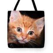 Orange Baby Tote Bag