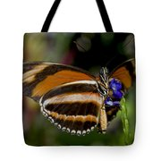 Orange Banded Butterfly Tote Bag