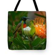 Orange-breasted Sunbird II Tote Bag
