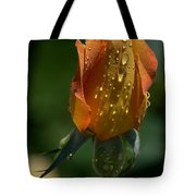Orange Bud Tote Bag