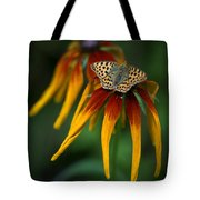 Orange Butterfly With Black Dots Sitting Onthe Red And Yellow Long Petaled Flowers Tote Bag