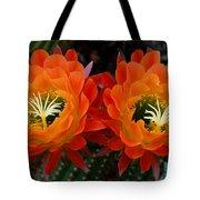 Orange Cactus Flowers Tote Bag