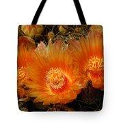 Orange Cactus Tote Bag