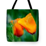 Orange California Poppies Tote Bag