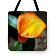 Orange Calla Lilly Flower In The Garden Tote Bag