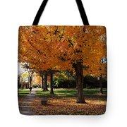 Orange Canopy - Davidson College Tote Bag