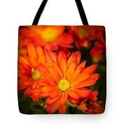 Orange Chrysanthemum Tote Bag