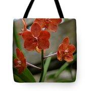 Orange Colored Orchid Tote Bag