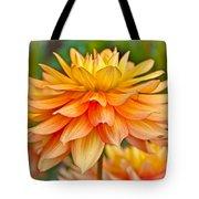 Orange Cream Dahlia Tote Bag