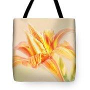 Orange Cream Tote Bag