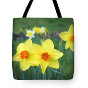 Orange Daffodils Flowers Spring Garden Tote Bag