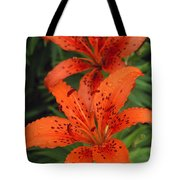 Orange Day Lilies Tote Bag