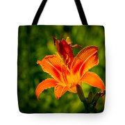Orange Daylily Flower 3 Tote Bag