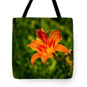 Orange Daylily Flower 4 Tote Bag