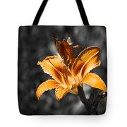 Orange Daylily Flower On Gray 3 Tote Bag