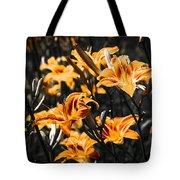 Orange Daylily Flowers On Gray 5 Tote Bag
