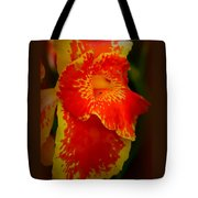 Orange Delight Tote Bag by Debra Forand