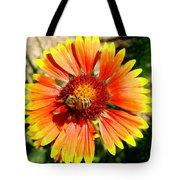 Orange Fiery Gaillardia Flower And Bee Macro Tote Bag