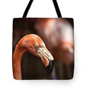 Orange Flamingo Tote Bag