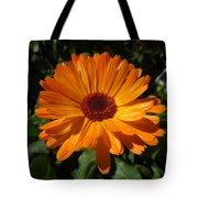 Orange Flower In The Garden Tote Bag
